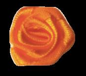 Oranžová růžička